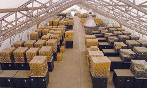 Warehouse Storage under a truss frame