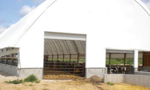 Fabric livestock shed