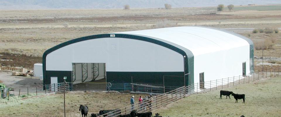 cattle building