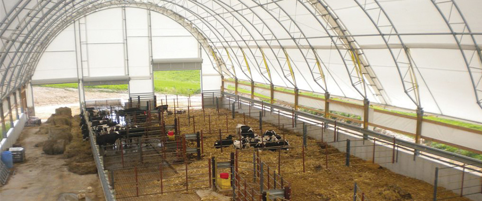 Barn Ventilation Design: Getting it Right | ClearSpan