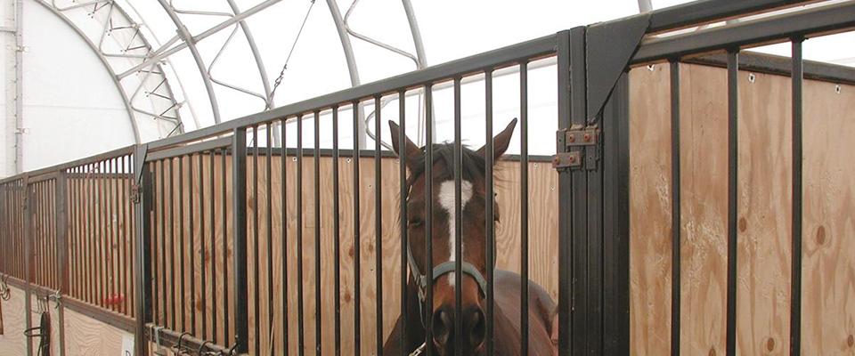 Fabric horse barns