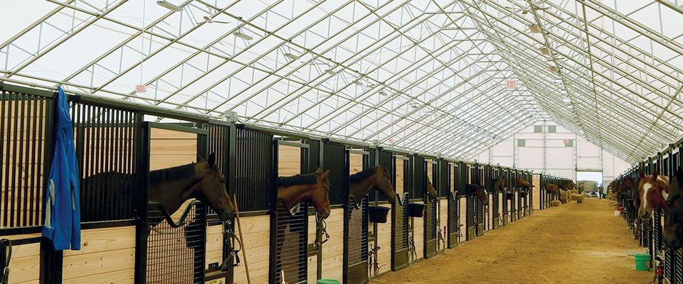 Custom horse barn