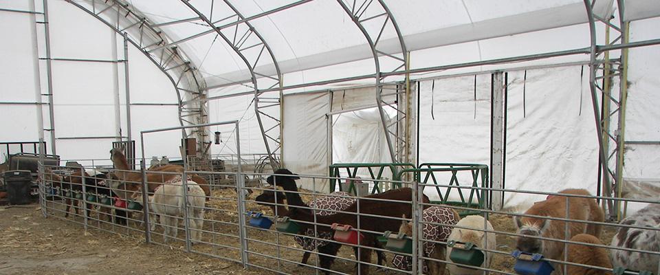 Fabric livestock shelters