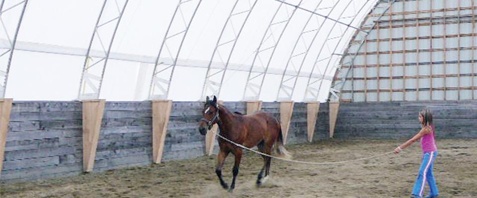 Pony wall building